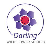 Darling Wildflower Show 2018