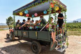 Eikendal Weintaufe Harvest Carnival 2019