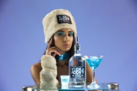VodkaFest Cape Town