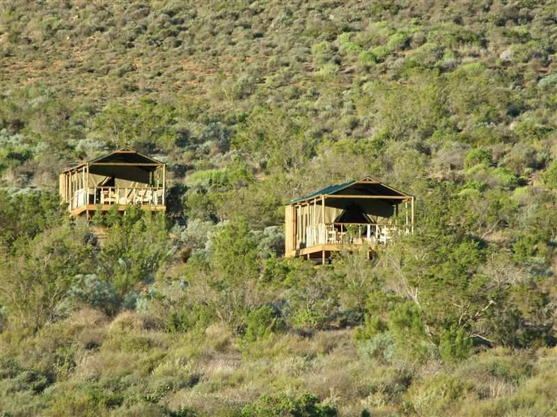 Agama Tented Camp Garies South Africa