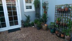 Perfect town cottage in the heart of Cape Town CBD