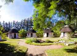 Addo African Home  Restaurant  Safari