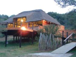 Addo Elephant Back Safaris & Lodge