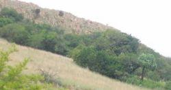 Afrika Suid Eyrie