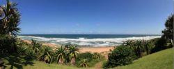 Aloe Beach