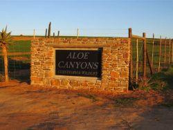 Aloe Canyons