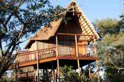 Bona Ntaba Self Catering Tree House Lodge