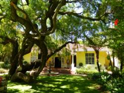 Kareebloem Guesthouse