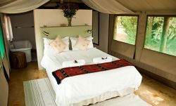 B'sorah Luxury Tented Camp