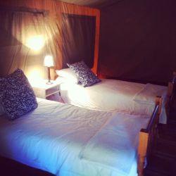 Buffalo Drift - Tented camp