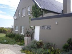 Cactus Lodge