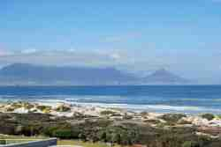 Dolphin Beachfront Condo