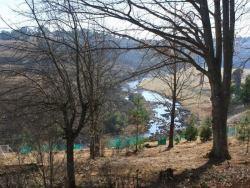Douglas View