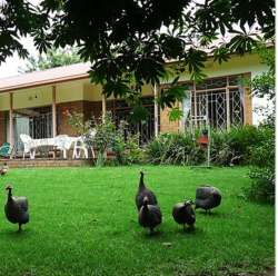 Guinea Fowl Lodge