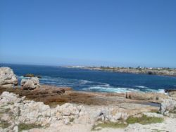 Hermanus Beach Club 61