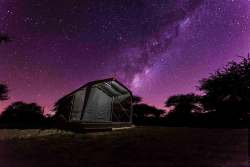 Horizon Tented Camp