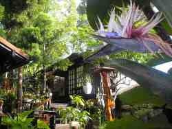 Inyathi Guest Lodge