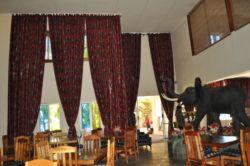 Ivory Tusk Travel Lodge