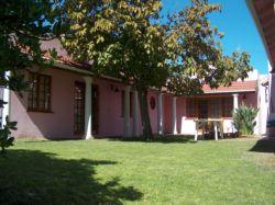 Le Palais D'Afrique