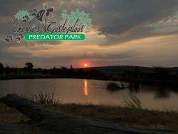 Loebies Guestfarm & Predator Park
