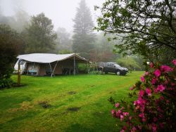 Mountpark Guest Farm