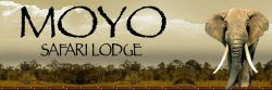 Moyo Safaris