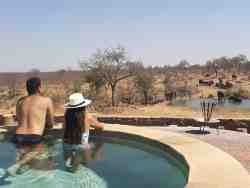 nDzuti Safari Camp