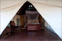 Pungwe  Bush  Camp