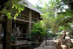 Pure Joy Guest Lodge