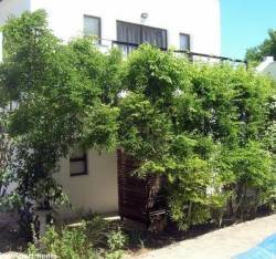 16 Rhodes-North Self-Catering Apartments