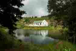 Tangleberry Cottage