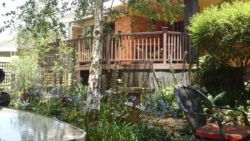 The Birches Backpackers Lodge