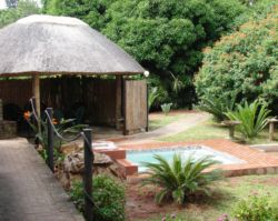 Tree Top Cottage & Safaris