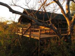 Tshulu Wilderness Tented Camp