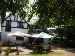 Durban Bed and Breakfast