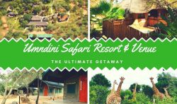 Umndini Safari Resort & Venue