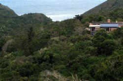 Vic Bay Surfari