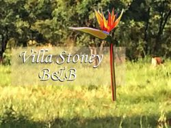 Villa Stoney B&B
