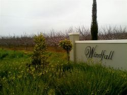 Windfall Guest Cottages