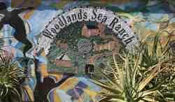 Woodlands Sea Ranch