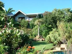 Yellowwood Loft Self Catering Cape Town