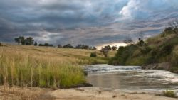 Zulu Waters Game Reserve