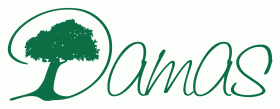 Damas Guesthouse & Restaurant