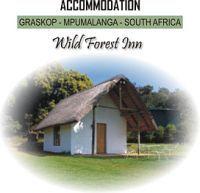 Wild Forest Inn