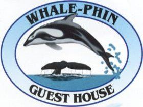 Whale-Phin Guest House