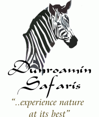 Book Dunroamin Safaris now | Cottages / Chalets Vaalwater Waterberg Bushveld Limpopo South Africa