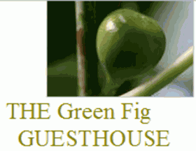 Green Fig Guesthouse, Suurbraak