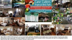 Cane Cutter Chalets