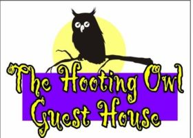 The Hooting Owl