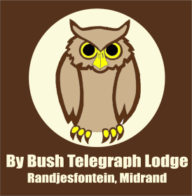 By Bush Telegraph Lodge